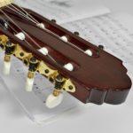 cours de guitare pour adulte
